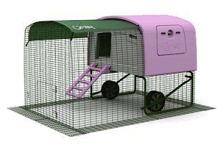 l'ortodimichelle: Camping per animali domestici