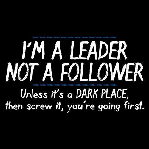 I'm a leader, not a follower..