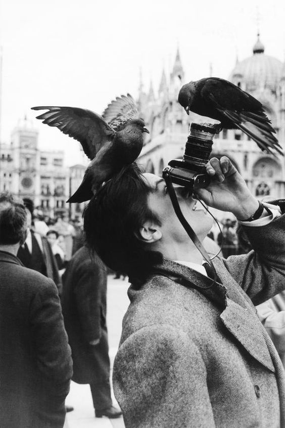 Lovely candid of Alain Delon, his camera, and pigeons