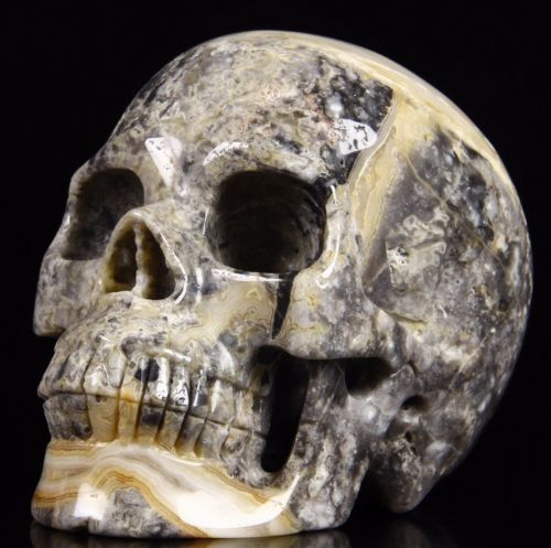 "Huge 5.2"" CRAZY LACE AGATE Carved Crystal Skull Realistic Crystal Healing https://t.co/yk8ZB2WmMh https://t.co/srSlax7urF"