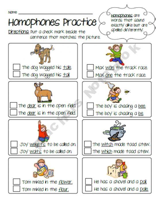 Homophones Practice Worksheet Language Arts Elementary Homeschool Language Arts Homophones