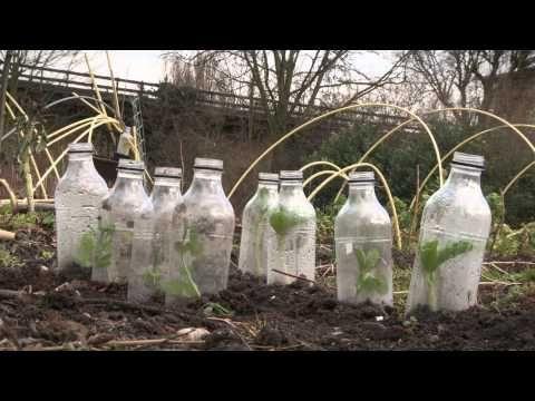 ▶ Stadslandbouw in beeld - YouTube