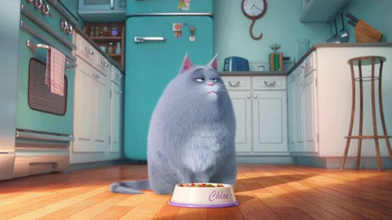 What are your pets up to when you're not home? The Secret Life of Pets movie, starring Kevin Hart, Louis C.K., Lake Bell, & Eric Stonestreet. In theaters July 8. Click to watch.