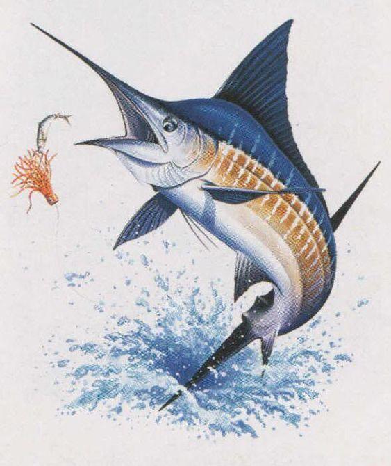 Big Blue Marlin Fish Marine Cross Stitch Pattern Spring