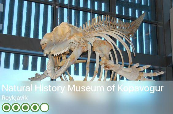 https://www.tripadvisor.com/Attraction_Review-g189970-d246002-Reviews-Natural_History_Museum_of_Kopavogur-Reykjavik_Capital_Region.html?m=19904
