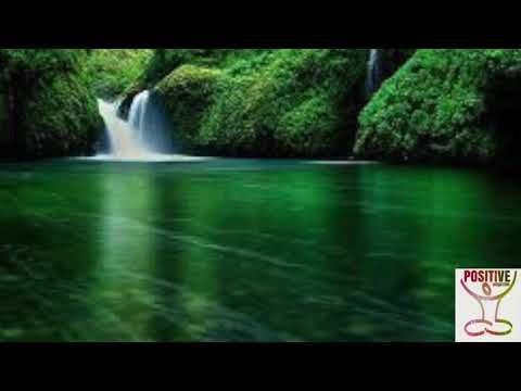 1 Minute Positive Loving Words For A Good Morning Positive Energy Calm Voice Healing Words Positive Thinking Life Style Hd Nature Wallpapers Nature Wallpaper Best Nature Wallpapers