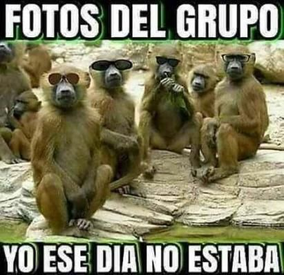 Memes Mexicanos Chistosos Frases 46 Trendy Ideas Fotos Divertidas Para Whatsapp Frases Para Reirse Mucho Imagenes De Risa Memes