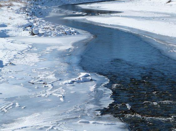 Winter Jewel!  by: Karin Bird // Okotoks, Alberta // Jan 20, 2013