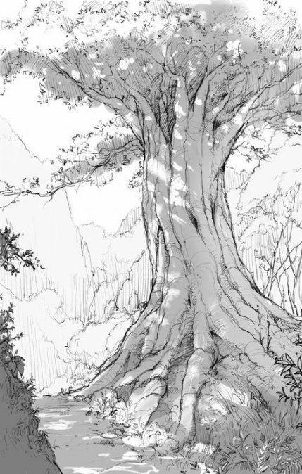 Sketsa Pemandangan Alam Pohon