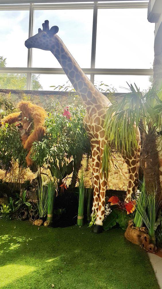 Location Girafe En Resine Decoration Jungle Moquette Gazon Jungle