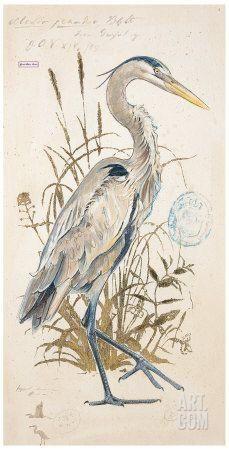 Great Blue Heron Art Print by Chad Barrett at Art.com: