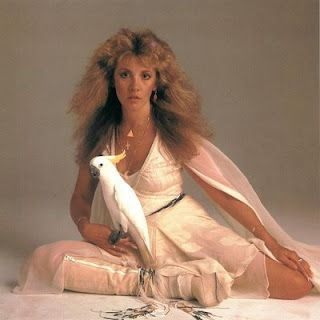 bird/Stevie Nicks i tried so hard to be her out of admiration