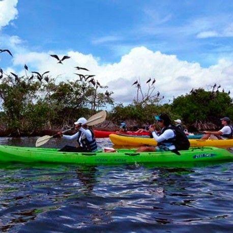 #Kayak #Margarita #LaRestinga #Margarita