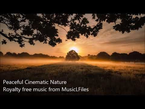 Peaceful Cinematic Nature Royalty Free Music Musiclicensing In 2020 Royalty Free Music Royalty Music Free Music