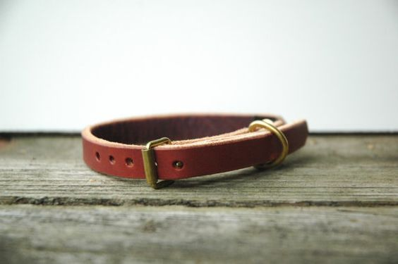 leather cat collar for Fin