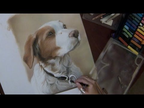 Pastel Dog Portrait- Timelapse Speed Painting