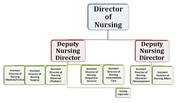 Image result for organizational chart leadership class Pinterest - hospital organizational chart