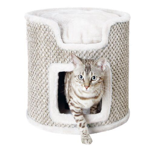 15 Gladstone Cat Condo Cat Condo Gladstone Cat Cat Tower