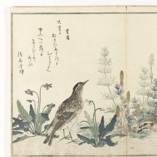 Twee kwartels en een leeuwerik, Kitagawa Utamaro, Tsutaya Juzaburo (Koshodo), 1794 - 1798