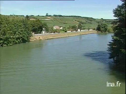 Vendanges du champagne en Seine-et-Marne