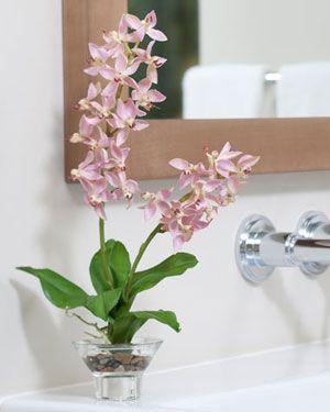 Simple, fresh, clean: Vase, Cleanses, Fresh Clean, Centerpieces, Simple Fresh