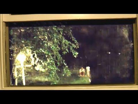 Sasquatch Caught Looking Through The Window Audio Amplified Youtube Bigfoot Sightings Sasquatch Through The Window