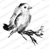 CLEAR IMPRESSIONS COLLECTION BIRD SONG stamp - Google Search