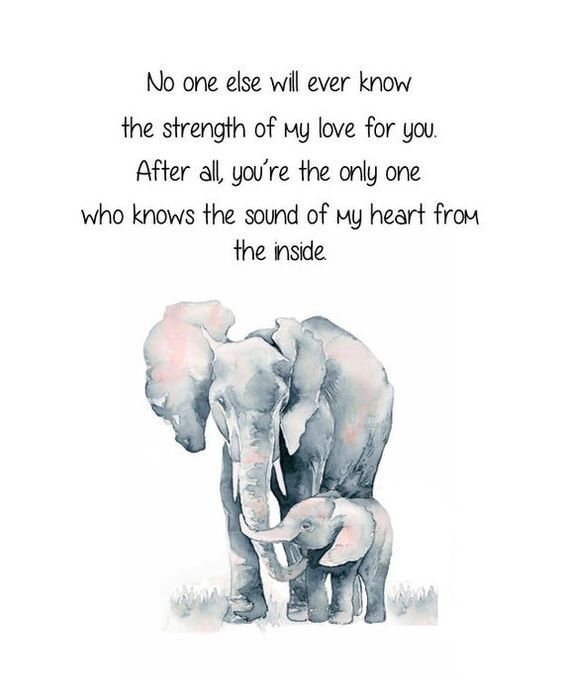 Elephant And Baby Elephant No One Else Will Ever Know The Strength Of My Love For You Mother And Child Elephant Quote Nursery Elephant In 2021 Elephant Quotes Mothers Love Quotes