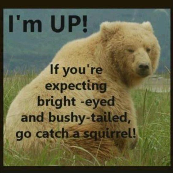I'm up, I'm up....: