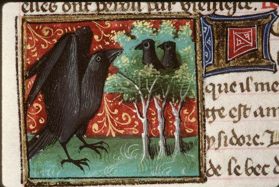 Bartholomaeus Anglicus  Livre des proprietes des choses (Le)  1447  Corbeaux nourrissant ses petits