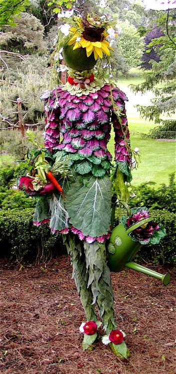 BEST SCARECROW EVER!  ~~  Houston Foodlovers Book Club