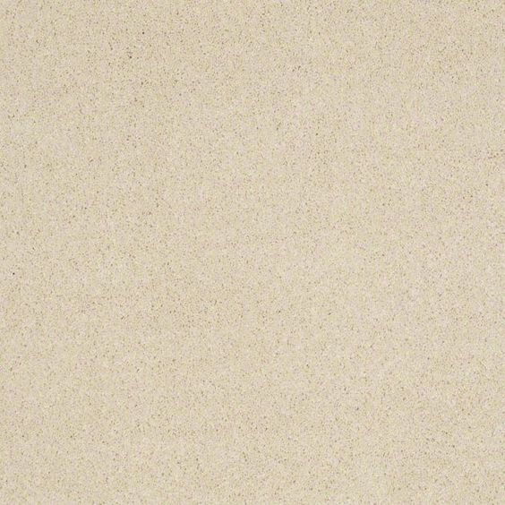 """Carpeting in style """"Cashmere IV"""" - color Churro - Amazingly Soft! - Flooring by Shaw"""
