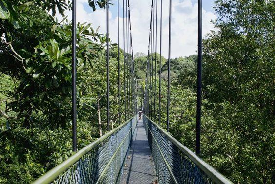 Cầu trên núi Mount Faber
