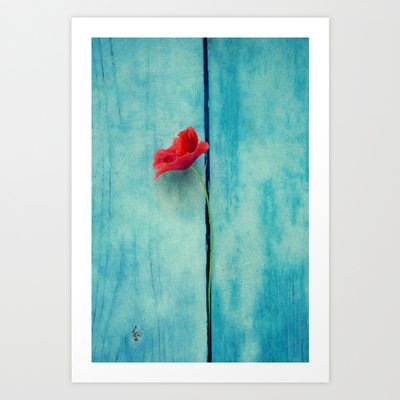 papoula Art Print by Claudia Drossert - $18.72