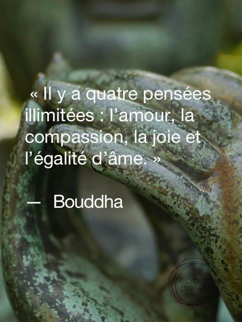 #citation :  4 pensées illimitées  #Bouddha:
