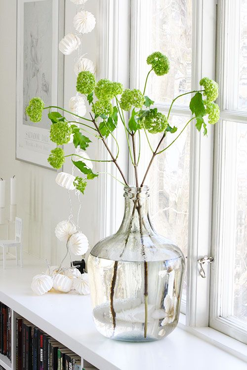 Spring inspiration and decorating ideas! Vivid green cuttings in a European styled wine jug clear glass vase in a window sill. Enchanting and Spring magic!