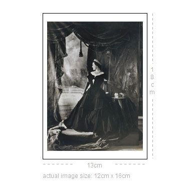 V Victoria Albert Museum > Main Section > Shop by theme > Diamond Jubilee > Queen Elizabeth (Custom print)