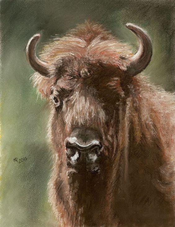 The Polish forest buffalo, soft pastels 30x40 cm