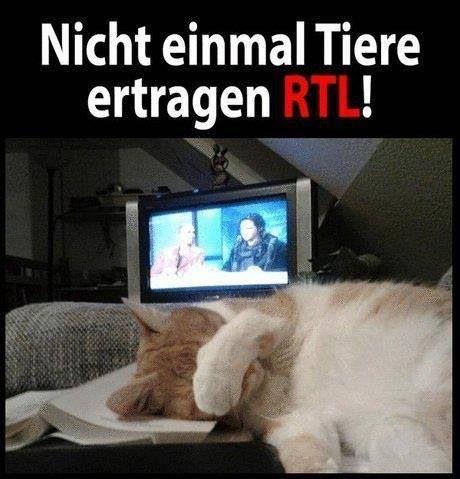 Ist halt RTL Funny stuff u0027D Pinterest - mein garten rtl