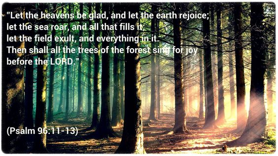 """""""Let the heavens be glad, and let the earth rejoice; let the sea roar, and all that fills it; let the field exult, and everything in it. Then shall all the trees of the forest sing for joy before the LORD.""""  (Psalm 96:11-13)"""