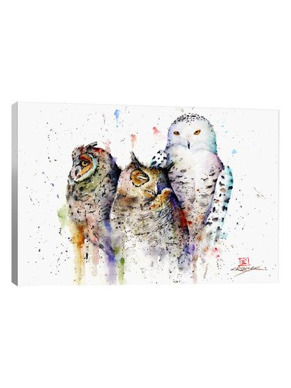 Owls Don't Sleep by Dean Crouser (Giclee Canvas) by iCanvas at Gilt