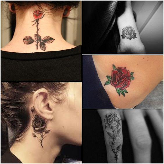 tattoo rosa vermelha - Pesquisa Google