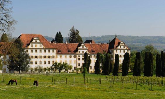"""Schloss Salem: 640 Schüler besuchen das idyllisch gelegene Internat in Baden-Württemberg nahe des Bodensees. Die Kosten für den Schulbesuch betragen knapp 35.000 Euro im Jahr.  Schüler schreiben Nachrichten und telefonieren auf dem Schulhof. Weil der Medienkonsum bei den 13- bis 17-jährigen Besuchern des Internats Schloss Salem """"eingerissen"""" und """"exzessiv"""" sei, hat die Privatschule kürzlich strikte Regeln erlassen. Zwischen 21.30 und 14.15 Uhr gilt für die Schüler nun ein Handyverbot."""