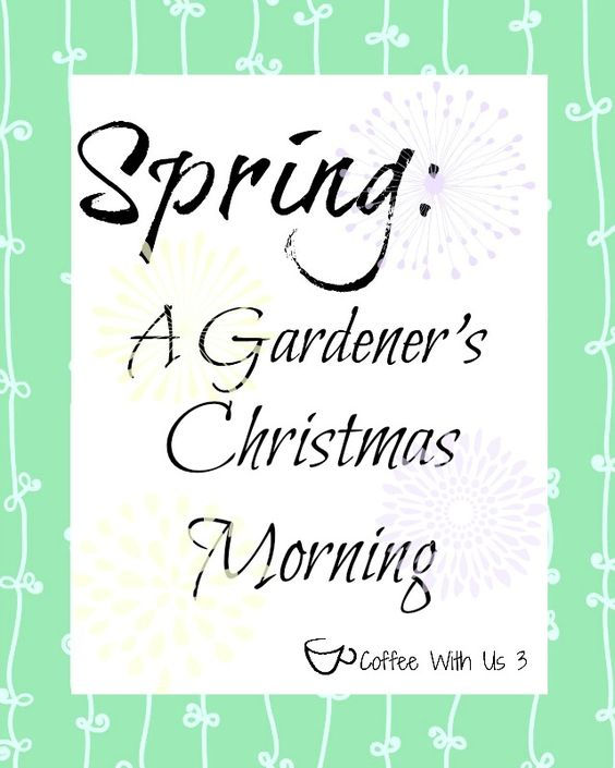 Spring Quotes, Printables And Spring On Pinterest