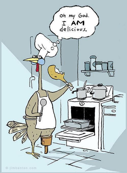 This is how our chickens act! Humorous Thanksgiving Cartoons   HUMOR FOR HAPPINESS (Thanksgiving Turkey Cartoons)  t