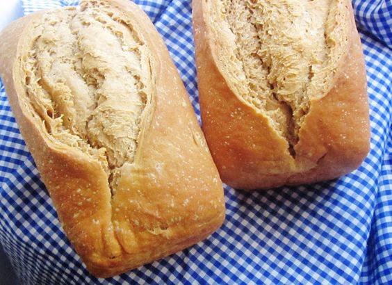 Chef Tess Bakeresse: How to Never Buy Yeast Again. The Everlasting Yeast No Knead Bread Tutorial.