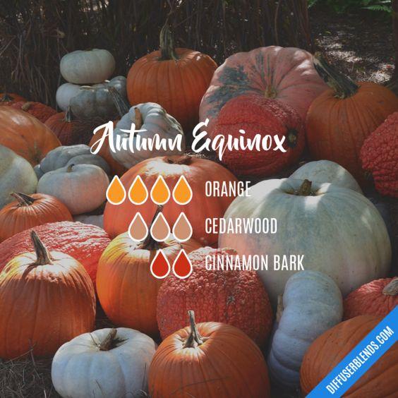 Autumn Equinox - Essential Oil Diffuser Blend