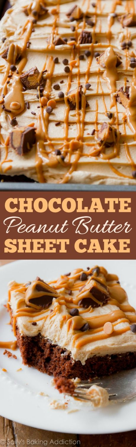 Chocolate Sheet Cake with Creamy Peanut Butter Frosting Dessert Recipe via Sally's Baking Addiction - Fudgy, beyond rich chocolate sheet cake topped with the creamiest peanut butter frosting. Feeds a crowd! The Best EASY Sheet Cakes Recipes - Simple and Quick Party Crowds Desserts for Holidays, Special Occasions and Family Celebrations #sheetcakerecipes #sheetcake #sheetcakes #cakerecipes #cakes #dessertforacrowd #partydesserts #christmasdesserts #thanksgivingdesserts #newyearseve #birthdaydesserts
