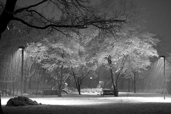 Snow falling at the park . Chicago in February.