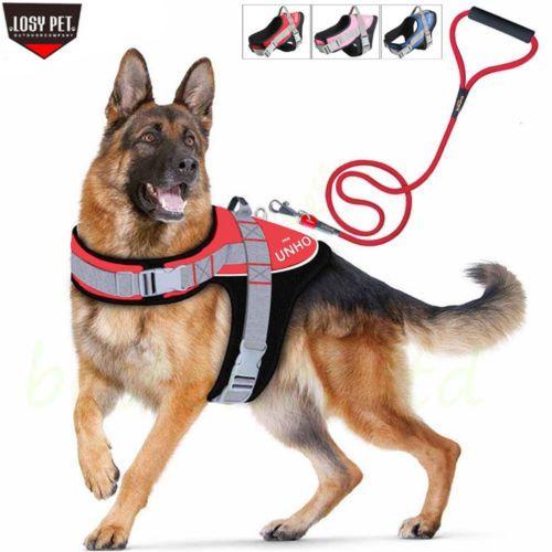 Soft Padded Adjustable Big Dog Vest Harness Leash Set For Large